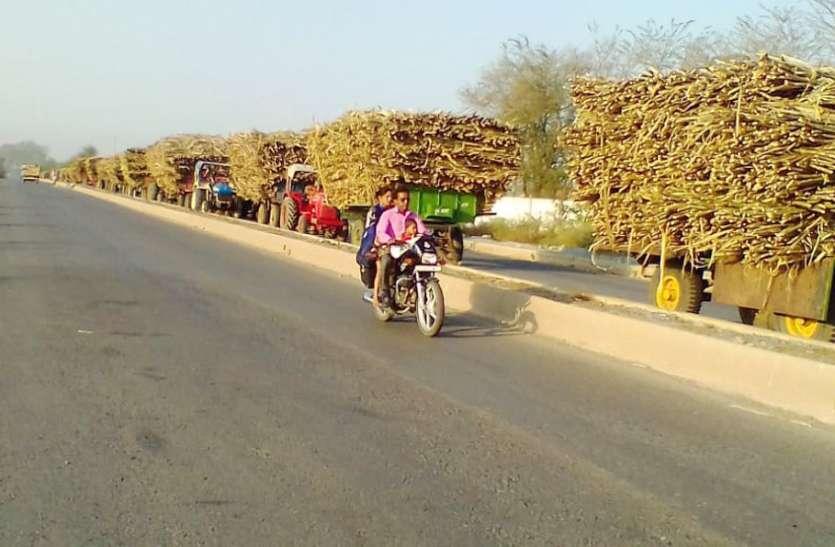 भोरमदेव शक्कर कारखाना में तीन से चार दिन बाद होती है तौल, किसान हो रहे परेशान