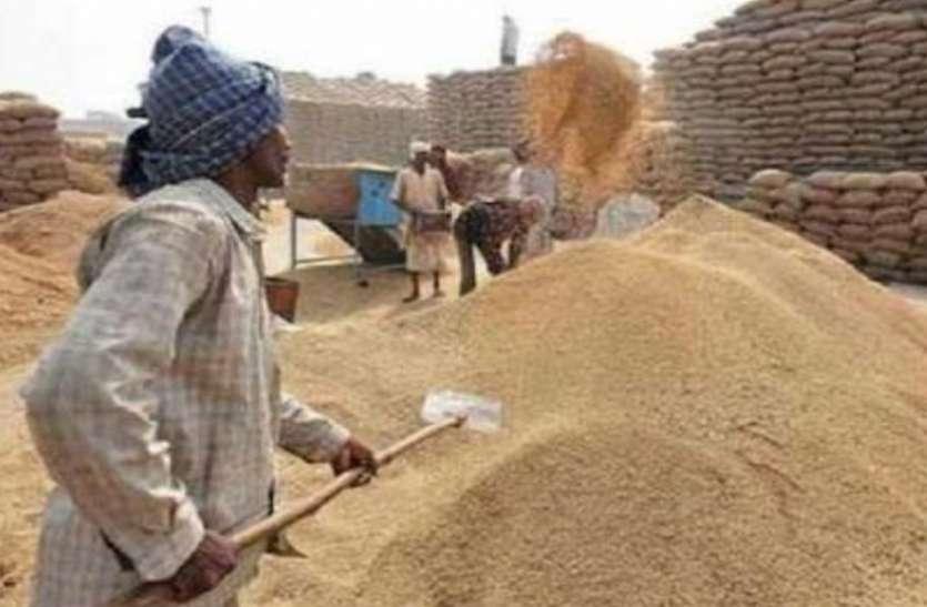 कृषि उपज मंडी समिति रायपुर में धान की खरीदी