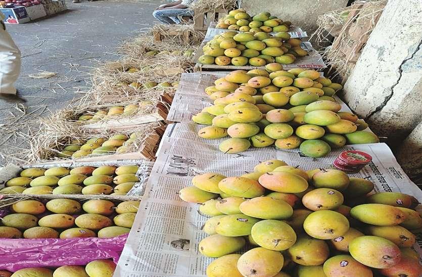 विमान किराया बढऩे से कम हुआ फलों का निर्यात