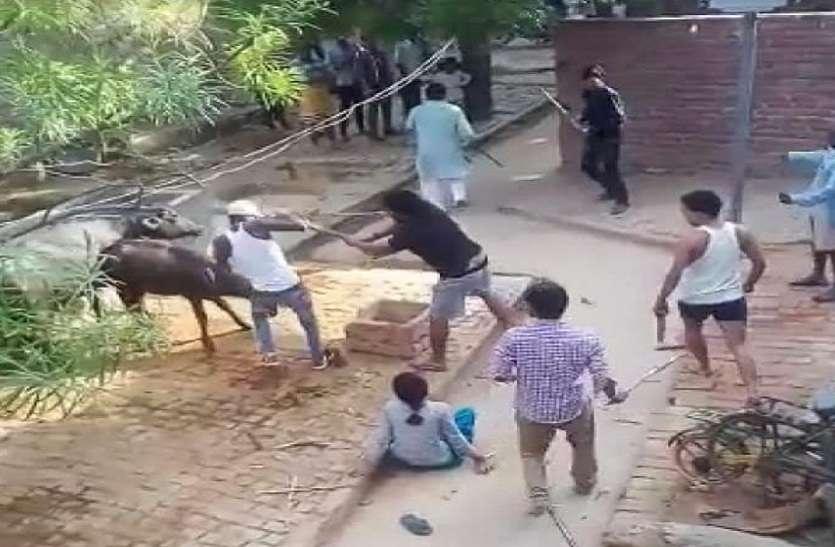 जानिए दबंग प्रधान ने लडकियों को दौड़ा-दौड़ाकर कैसे पीटा, देंखे पूरा वीडियो