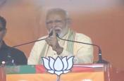 पीएम मोदी ने कहा,'बिहार में विपक्ष का सूपड़ा साफ'
