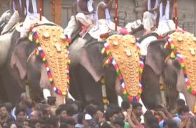 VIDEO: केरल में धूमधाम से मनाया गया त्रिशूर पूरम पर्व, वडक्कुमनाथन मंदिर में उमड़ी भक्तों की भीड़