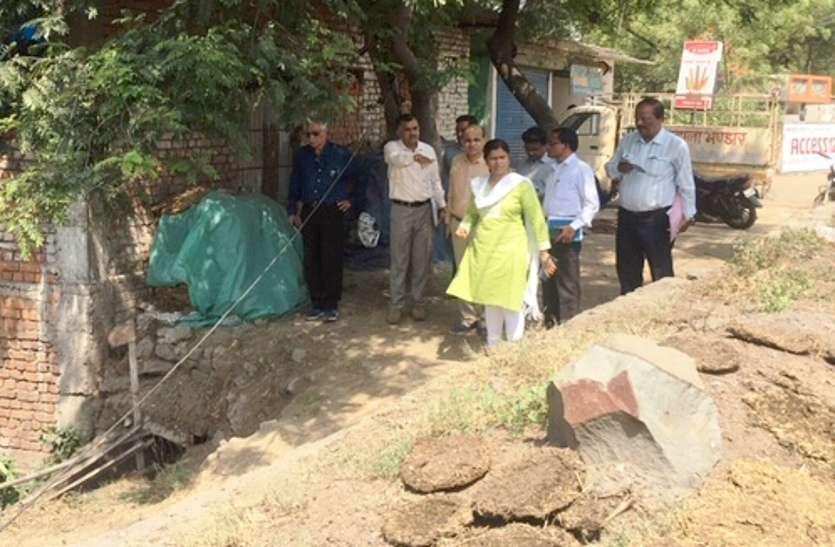 गोकुलनगर में ढाई एकड़ में बनेगा गौठान, प्रदेश में शहरी क्षेत्र का होगा पहला, 15 दिन में काम पूरा करने के निर्देश