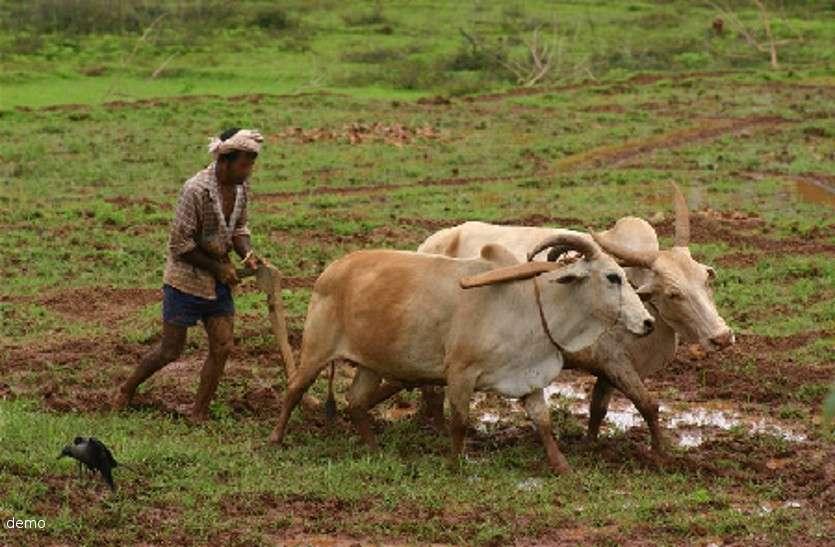 सरकार की कर्जमाफी के दावों के बीच कर्ज नहीं चुकाने पर पुलिस ने दो आदिवासी किसानों को भेजा जेल