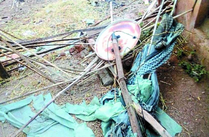 ओडिशा से पहुंचे जंगली हाथी मचा रहे उत्पात, तोड़ रहे ग्रामीणों का घर