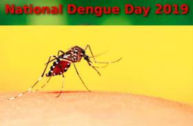 National Dengue Day – जानिए डेंगू के इलाज के लिए आयुर्वेेदिक और होम्योपैथिक तरीके