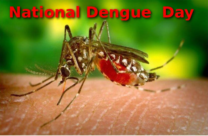 National Dengue Day – डेंगू के बारे में जानिए खास बातें जो आप जानना चाहते हैं
