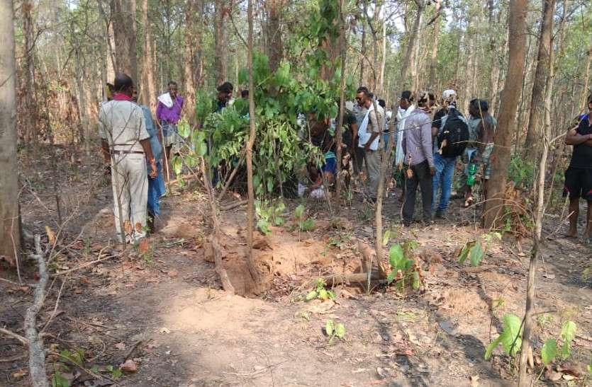 तेंदूपत्ता एकत्र करने जंगल गए परिवार का हाथियों के झुंड से हो गया सामना, जान बचाने भाग रहे एक महिला को हाथियों ने दौड़ाकर मारा