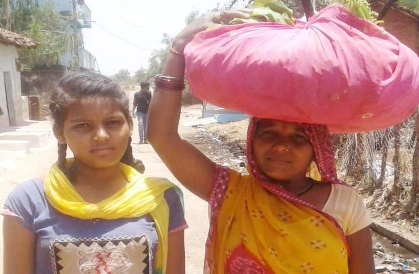 Video: मां के साथ जंगल से तेंदूपत्ता लेकर पहुंची महिमा को पता चला कि जिले में किया है टॉप, अभाव में भी नहीं टूटा इन टॉपरों की हौंसला, अजब है कहानी
