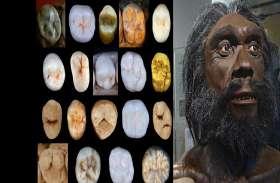 हमारे पूर्वज कौन थे? इन दांतों के आकर को देख वैज्ञानिक भी हैं हैरान