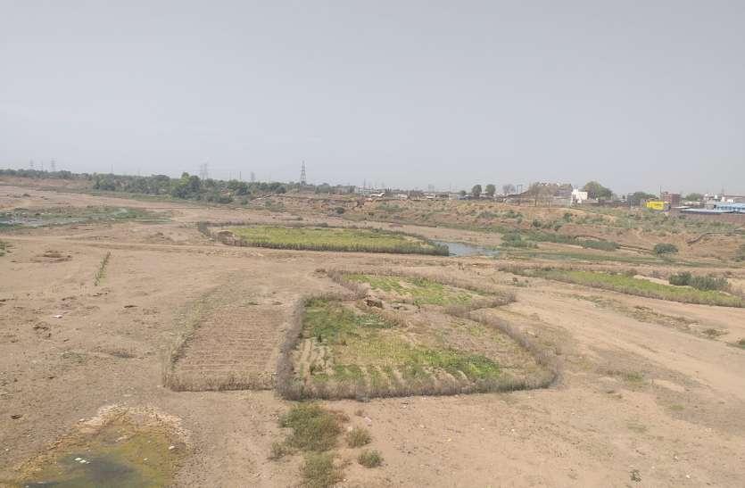 #पत्रिका सरोकार -  नदियां सूखने से छा रहा तरबूज खरबूज की खेती पर संकट