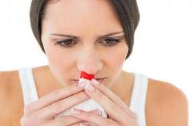 बिच्छू बूटी समेत करें इन 10 घरेलू नुस्खों का इस्तेमाल, नाक से खून आने की दिक्कत होगी दूर