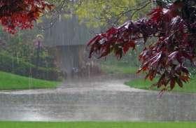 बारिश ने मौसम को बनाया खुशनुमा, खिल उठे किसानों के चेहरे