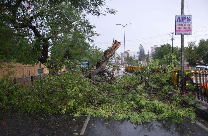 Thunderstorm: पेड़-खंभे एक झटके में धरायाशी, 28 से अधिक गांव-ढाणियों में सप्लाई बाधित, तस्वीरों में देखे तबाही का खौफनाक मंजर