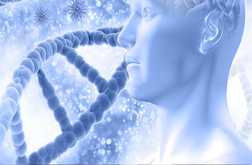 क्षतिग्रस्त कोशिकाओं की मरम्मत करती है स्टेम सेल थैरेपी, जानें इसके बारे में