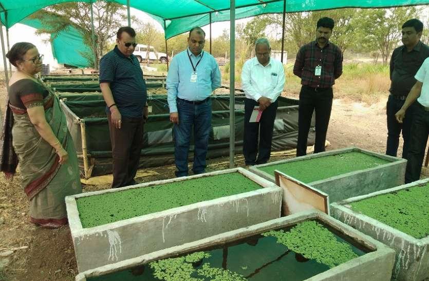 कृषि तकनीक विस्तार का पावर हाउस है कृषि विज्ञान केन्द्र : डांॅ. ओम गुप्ता