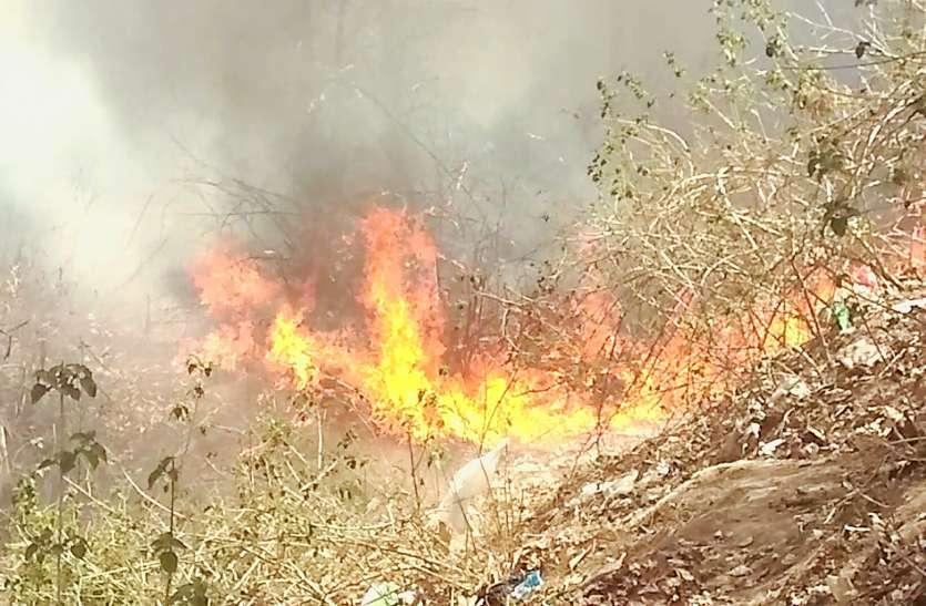नर्सरी में लगी भीषण आग