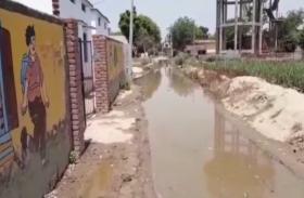 बागपत: कीचड़ व गंदा पानी पढ़ाई में बन रहा अड़चन, देखें वीडियो