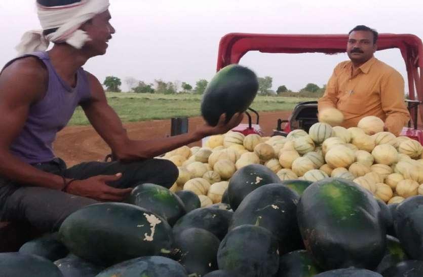 तरकीब बनी वरदान, किसान को मिल रहा तरबूज-खरबूज से लाखों रुपये का मुनाफा