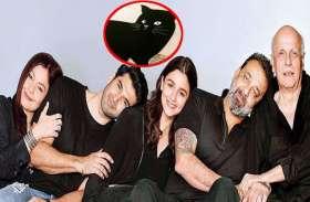 अतरंगी अंदाज में पूजा भट्ट ने किया आलिया का स्वागत, बिल्ली की फोटो शेयर कर लिखा...