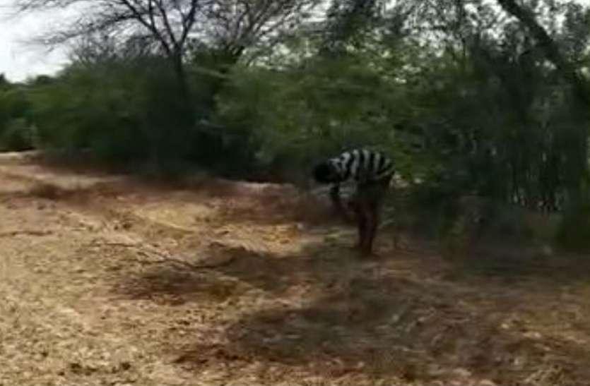 VIDEO: पुलिस को फंसाने के लिए लूट के आरोपी ने बनाई बड़ी भूमिका, वीडियो देखा तो खुल गया राज
