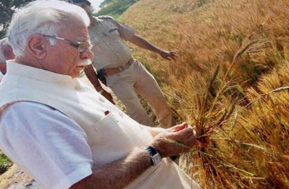 हरियाणा:धान की खेती रोकने के सुझाव से किसान नाराज, कृषि समस्याओं के समाधान के लिए रखी यह विशेष मांगें
