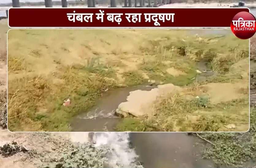 गंगा के बाद अब ये नदी भी चढ़ रही प्रदूषण की भेंट