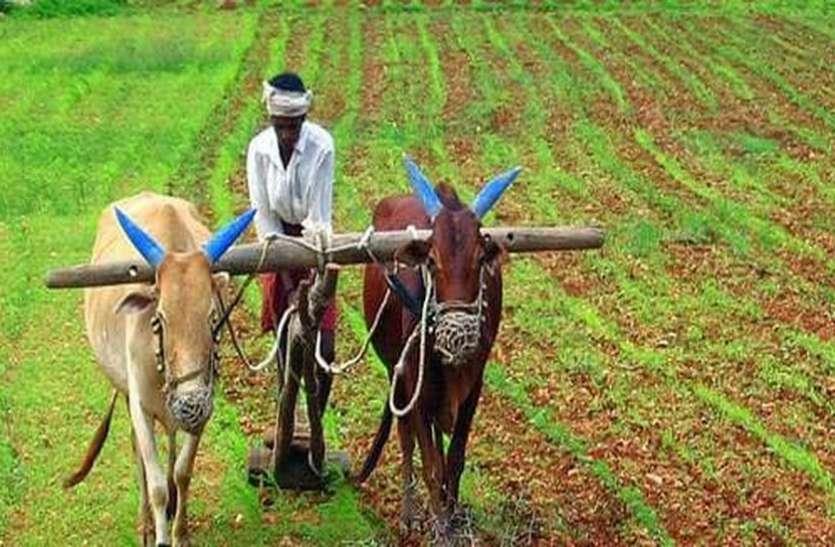 किसानों ने ही जुटाई धोखेबाज व्यापारी की संपत्ति की जानकारी
