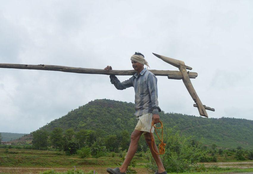 किसानों को बड़ी सौगात, अब नहीं पड़ेगी हाइब्रिड की जरूरत