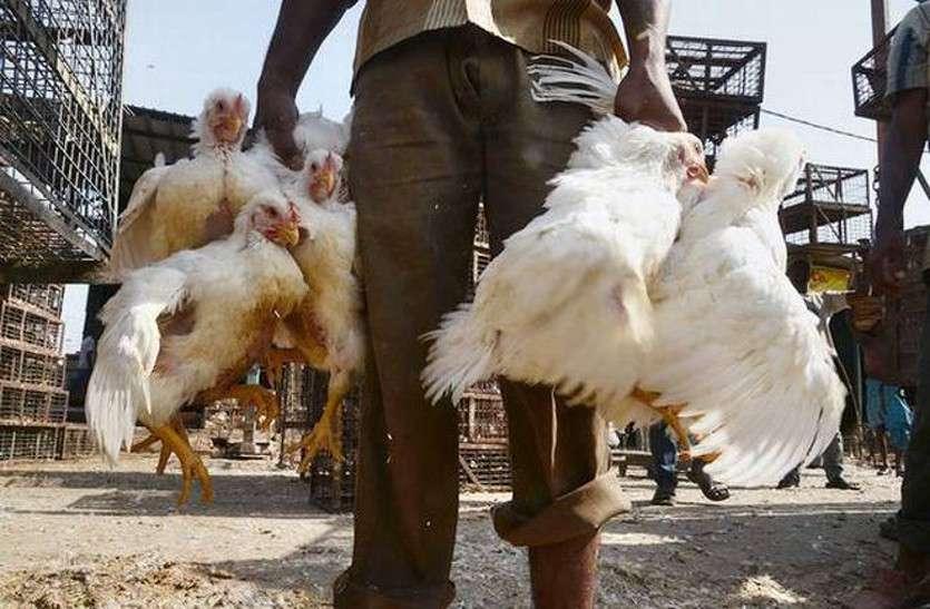 आधी रात को सड़क हादसे के बाद इस गांव के लोगों ने मनाई मुर्गे की दावत
