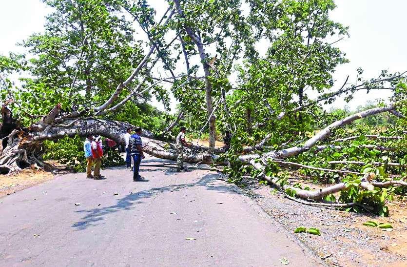 आंधी-तूफान ने जमकर बरपाया कहर, पेड़ गिरने से नेशनल हाइवे बाधित