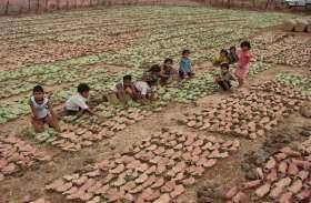 बीती रात तेंदूपत्ता के गोदामों में नक्सलियों ने की आगजनी, 150 बोरा जलकर खाक