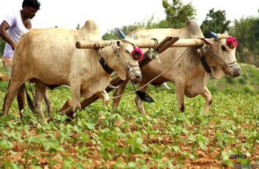 छत्तीसगढ़ के किसानों के लिए बुरी खबर, तरसेंगे खाद और बीज के लिए