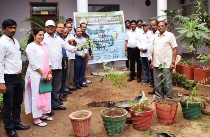 पर्यावरण का साफ -सुथरा और प्रदूषण मुक्त होना समाज के लिए वरदान