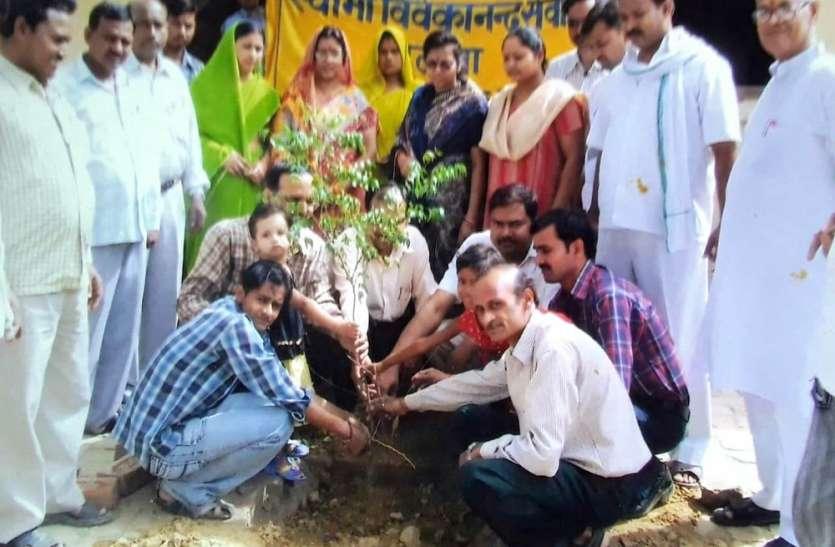 विश्व पर्यावरण दिवस : यहां महीने के हर रविवार को लगाया जाता है पेड़, घर-घर बांटी जाती है तुलसी