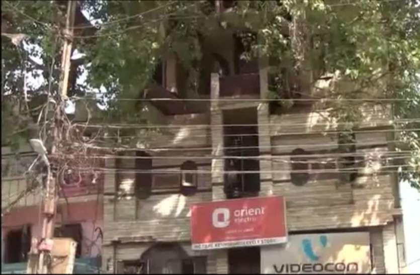 jabalpur house tree