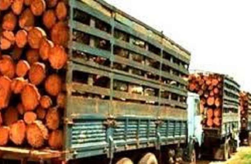 जलपाईगुड़ी से 1 करोड़ की लकड़ी के साथ, 2 तस्कर गिरफ्तार
