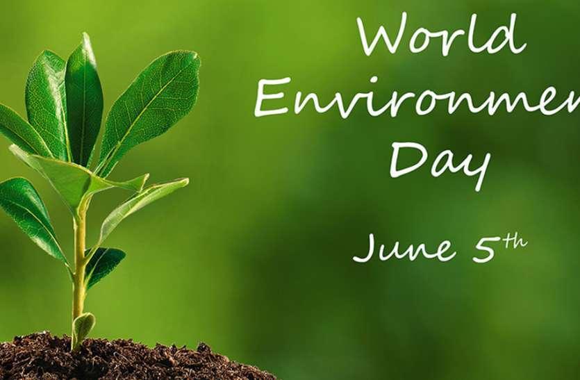 पर्यावरण दिवस से शुरू होगा वसुंधरा का महाश्रृंगार अभियान, लगाए जाएंगे 16 करोड़ पौधे