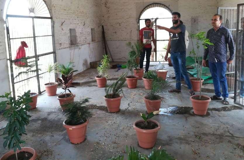 VIDEO: पर्यावरण संरक्षण की सीख दे रहे युवा, आय का एक हिस्सा करते है पौधरोपण पर खर्च