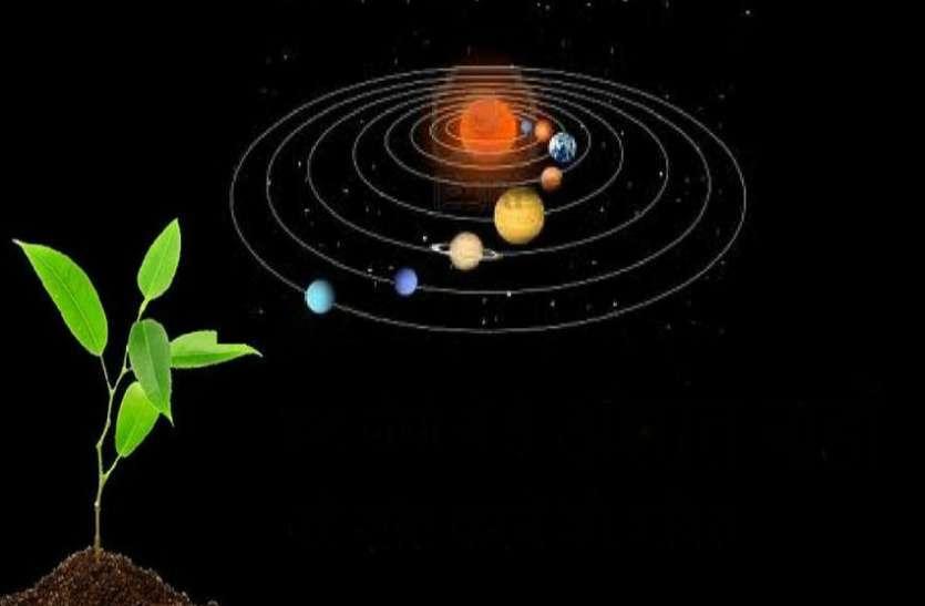 पौधा लगाने से भाग्य भी चमकता है,जानिए अपने नक्षत्र के हिसाब से किस पौधे का करें रोपण