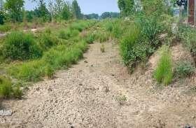 कौशाम्बी के हिस्से का पानी रोक लेते हैं फतेहपुर के किसान