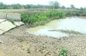 उदयपुर के इस बांध की नहरों से 22 गांवों में 6839 हेक्टेयर भूमि पर होती है सिंचाई, जानें पूरी कहानी