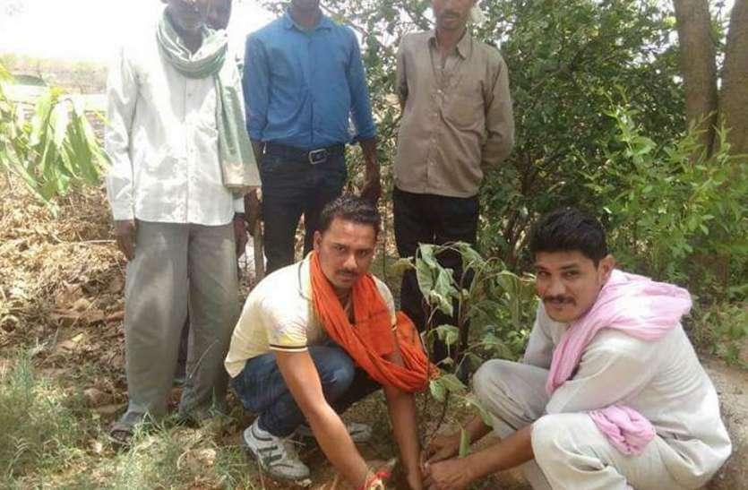 गांवों को हरा भरा बनाने आगे आए बच्चे, पेड़ों की रोकें अंधाधुंध कटाई