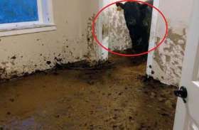 जब मालिक ने खोला अपने नए घर का दरवाजा फूट-फूटकर लगा रोने, कारण जान आप हैरान रह जाएंगे