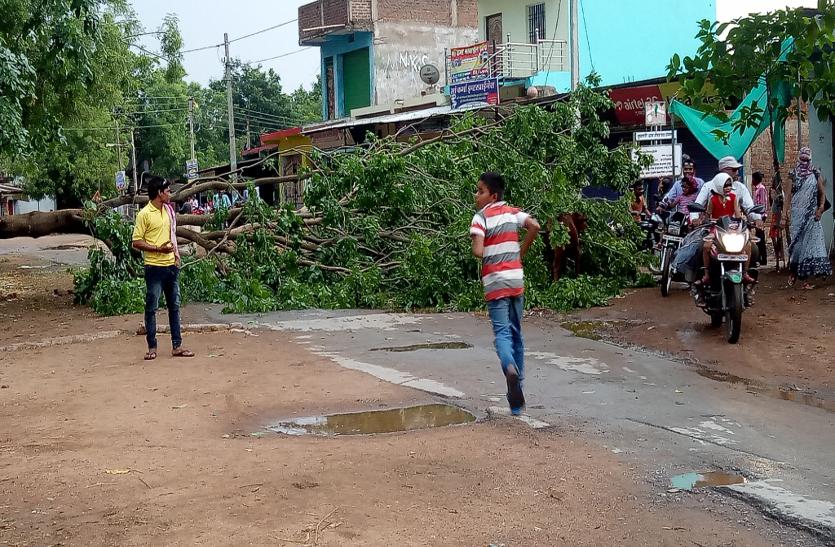 आंधी-तूफान से कई जगहों पर गिरे पेड़ और बिजली के पोल, सैकड़ों गांव अंधेरे में डूबे