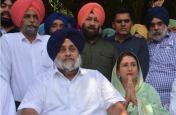 हरियाणा में अकाली दल ने भाजपा से मांगी 30 विधानसभा सीटें