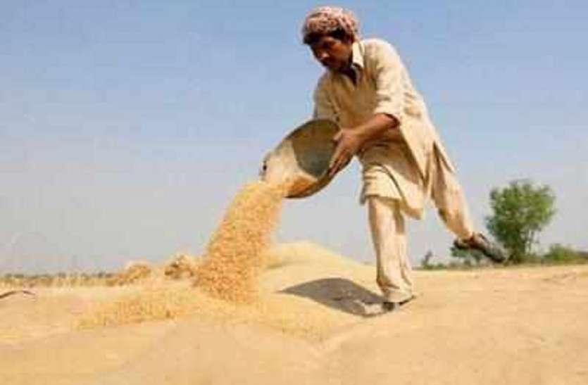 कृषि उपज मंडी में 10 से नहीं हुई डाक, बाजार में बिचौलियों से लुट रहे किसान