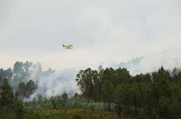 पुर्तगाल:  प्लेन क्रैश में दो की मौत, हादसे के बाद जंगल में लगी आग