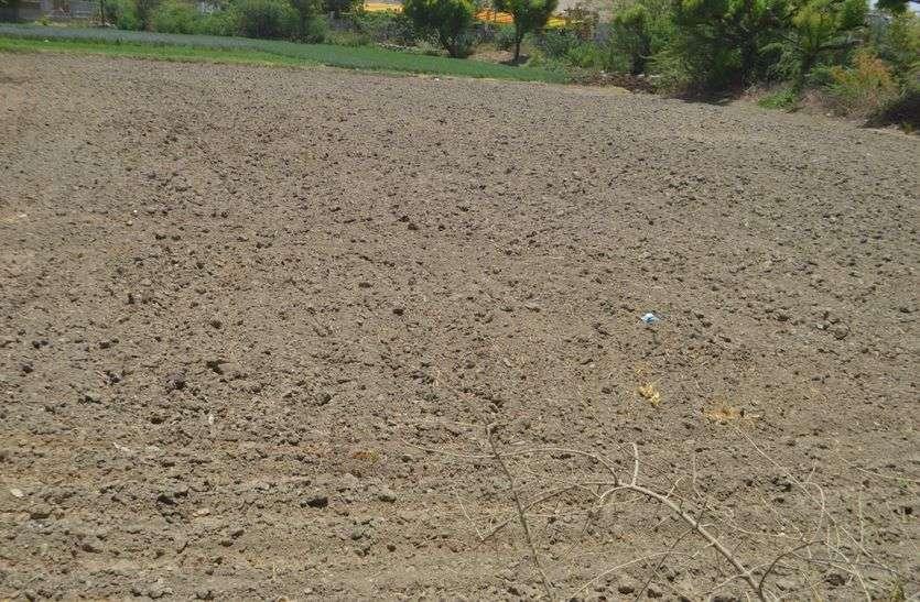 खेतों में दिखने लगे हल और किसान