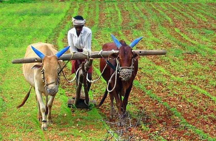 राजस्थान के 15 लाख किसानों के लिए केन्द्र से आई खुशखबर, अगले दो दिनों में खातों में आएंगे रुपए